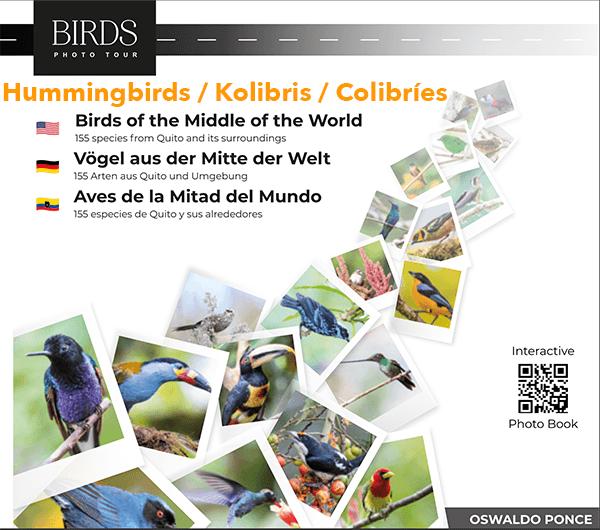Chap 1 Hummingbirds/Kolibris/Colibríes (ebook)